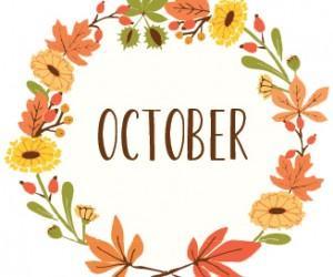 Newsletter October 2018;